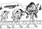 milo_carrying_bull_calf_op
